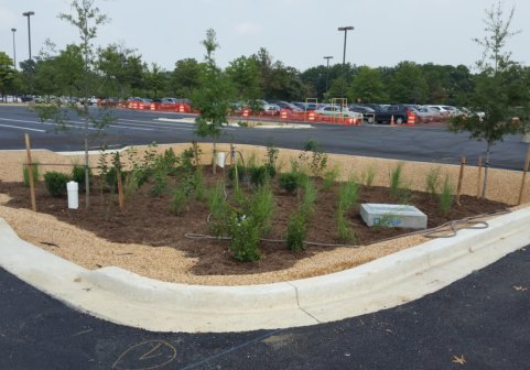 Andrews Connector Rd – Bio Pond 2016